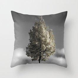 pleasant delirium Throw Pillow