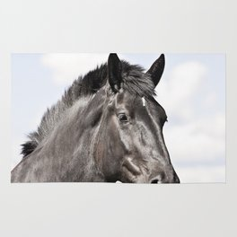 Black Horse Photograph in Color Rug