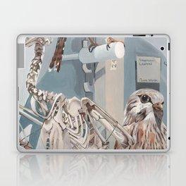 Peregrine Falcon and Kestrels Laptop & iPad Skin