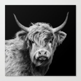 Highland Cow Black And White Canvas Print
