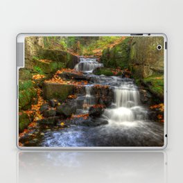 Bentley Brook waterfall Laptop & iPad Skin