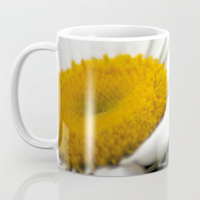Shasta Daisy Flower Coffee Mug