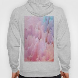 Delicate Glitches Hoody