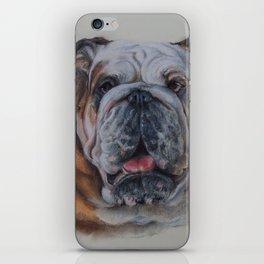 ENGLISH BULLDOG Bulldog bitch face Pastel drawing DOG portrait iPhone Skin