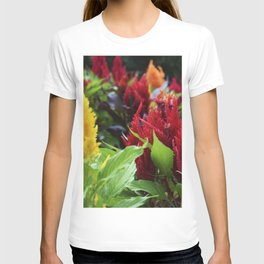 Red and Yellow and Pink Flowers Planted T-shirt