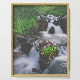 Wildflowers in the Stream above Montezuma, Colorado Serving Tray