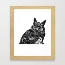 Mother Owl Framed Art Print