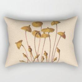 1800s Moss Lithograph Splachnum Luteum Rectangular Pillow