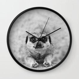 Smiling Meerkat Wall Clock