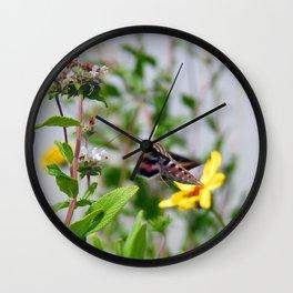 Tijuana Slough Beauty Wall Clock