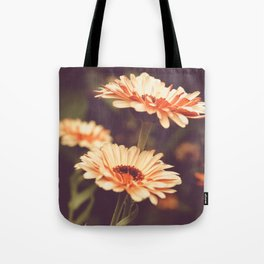 Salmon Colored Fields Tote Bag
