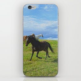 The Round Up iPhone Skin