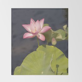 Pink Lotus by Teresa Thompson Throw Blanket