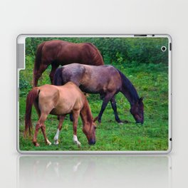 Grazing Horses Laptop & iPad Skin