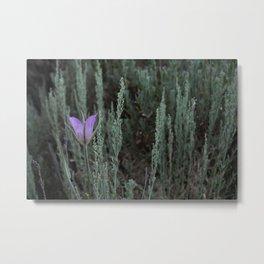 Purple and Sage Metal Print