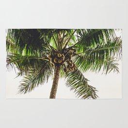 Coconut Bounty Rug
