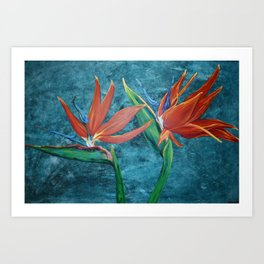 """Birds of Paradise"" Art Print"