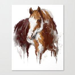 Paint Horse. Canvas Print