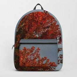 Fall by Teresa Thompson Backpack