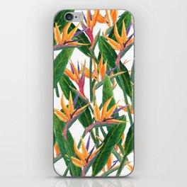bird of paradise pattern iPhone Skin