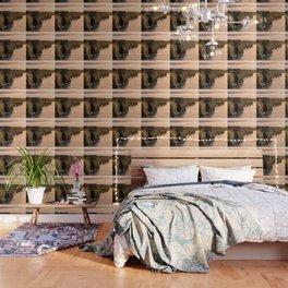 Cliffs Of Moher Wallpaper