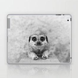 Smiling Meerkat Laptop & iPad Skin
