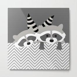 Raccoons Metal Print