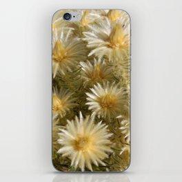 Fynbos Treasures iPhone Skin
