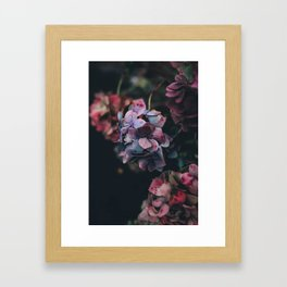 FLOWERS - FLORAL - PINK - RED - PHOTOGRAPHY Framed Art Print