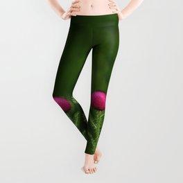 Prickly beauty Leggings