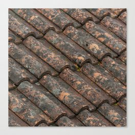 Old roof tiles vintage pattern Canvas Print
