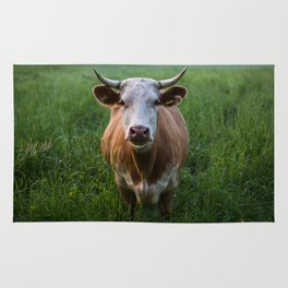 COW - FIELD - GREEN - VALLEY - NATURE - PHOTOGRAPHY - LANDSCAPE Rug