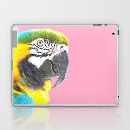 Macaw Portrait Pink Background Laptop & iPad Skin