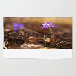 Come with me  Hepatica Forest #decor #society6 Rug