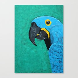Hyacinth Macaw Gouache Painting Canvas Print