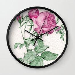 Rosa Centifolia Foliacea Wall Clock