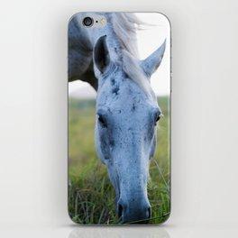 Bluey I iPhone Skin