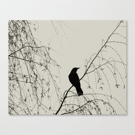 Crow in the Willow - Graphic Birds Series, Plain - Modern Home Decor Canvas Print