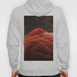 P.Y.T. (Pretty Young Thing) Hoody