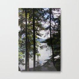 Lakeside trees Metal Print