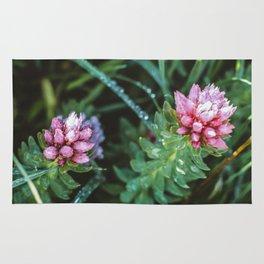 Dos Floras Rug
