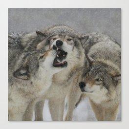Family Squabble Canvas Print