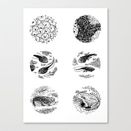 Tadpoles Canvas Print