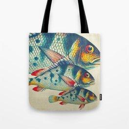 Fish Classic Designs 3 Tote Bag