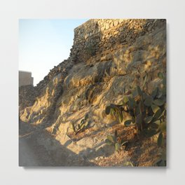 Cacti. Myconos Island. Greece. Metal Print