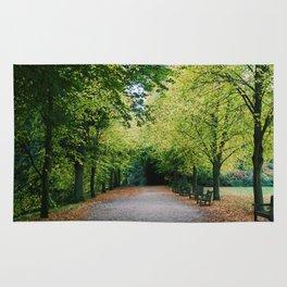 Fall path Rug