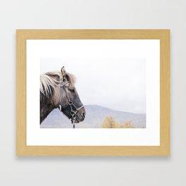 Hrekkur Framed Art Print