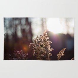 Goldenrod Light Rug