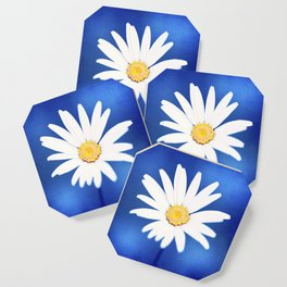 Royal Blue Yellow White Daisy Flower Photography, Bright Colorful Nature Photo Coaster