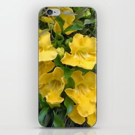 Cat's Claws Vines iPhone Skin